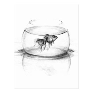 Goldfish in a bowl pencil art Postcard