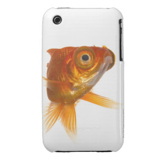 Goldfish with Big eyes 3 iPhone 3 Covers