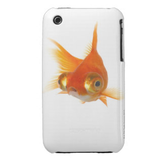 Goldfish with Big eyes iPhone 3 Cover