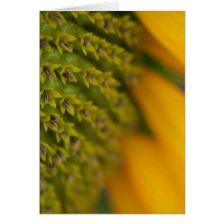 Goldie card