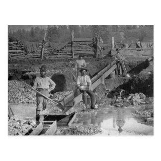 Goldminers Gold Rush Miners ~ California 1850 Postcard