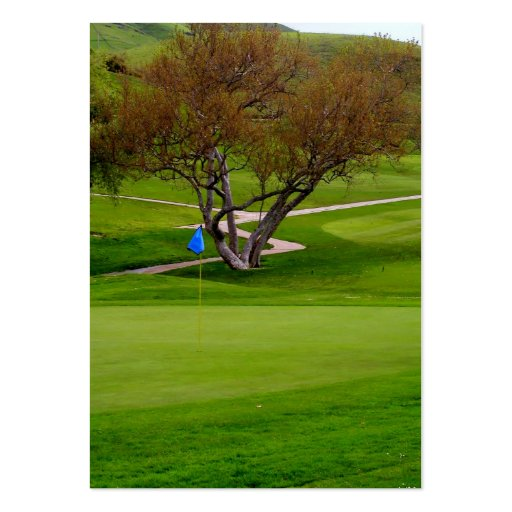 Golfing Pro Card Business Cards
