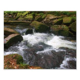 Golitha Falls River Fowey Cornwall England Photo