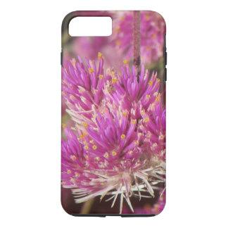 Gomphrena Fireworks Blooms iPhone 8 Plus/7 Plus Case