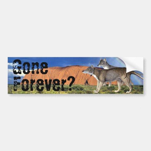 Gone Forever? Tasmanian Tiger Bumper Sticker