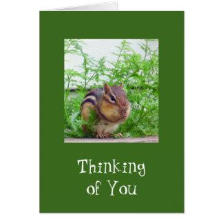 Good Day Wildlife Card
