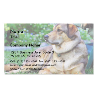 Good Dog Business Card Template