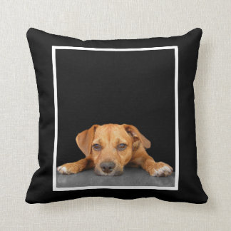 Good Dog Pillows
