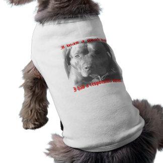 good dog-good owner pet tee shirt