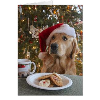 Good Dog! Greeting Card