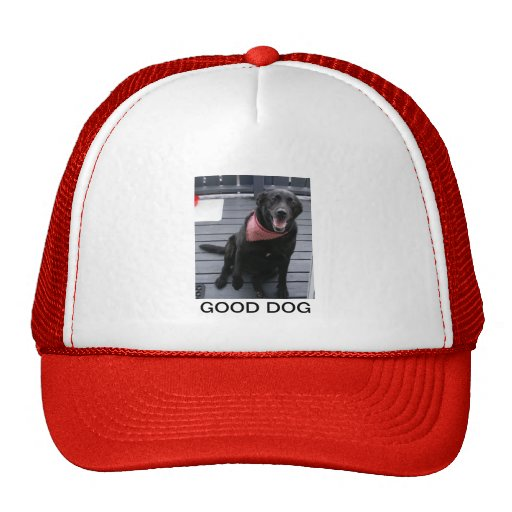 GOOD DOG HATS