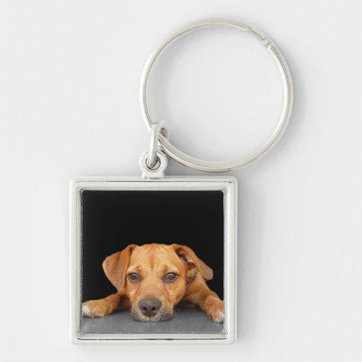 Good Dog Key Chains