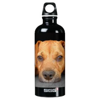 Good Dog SIGG Traveller 0.6L Water Bottle