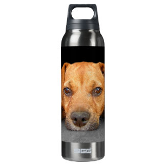 Good Dog 16 Oz Insulated SIGG Thermos Water Bottle
