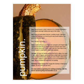 Good Growing Guide: Pumpkin & Chard Postcard