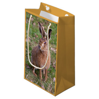 Good Hare Day Gift Bag