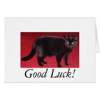 Good Luck cat Card