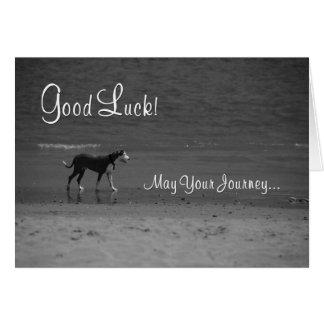 Good Luck - Dog on the Beach Greeting Card