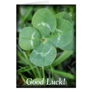 Good Luck Four Leaf Clover Greeting Cards