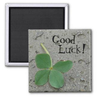 Good Luck! Four Leaf Clover Square Magnet