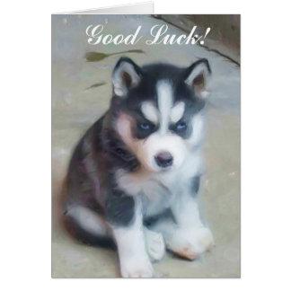 Good Luck Siberian Husky Puppy card