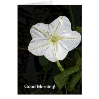 Good Morning Glory Friendship Card