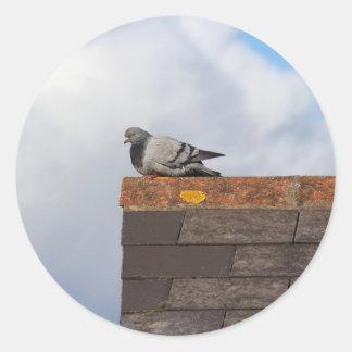 Good Morning Pigeon Round Sticker
