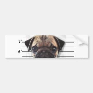 good pugs gone bad car bumper sticker