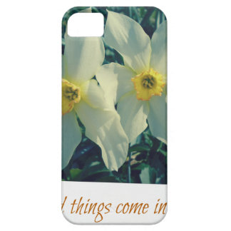 good things come in pairs iPhone 5 cover