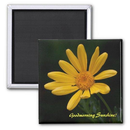 Goodmorning Sunshine Magnet