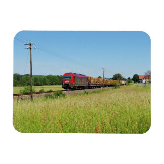 Goods train in Simtshausen Magnet