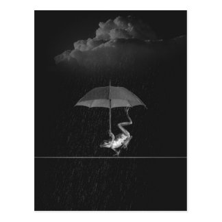 Goofy Black and White Frog with Umbrella in Rain Postcard