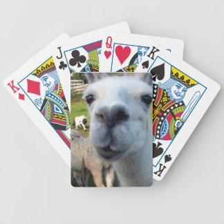 Goofy Llama Playing Cards