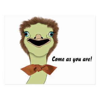 Goofy Ostrich Invitation Post Card