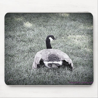 Goose AC Mouse Pad