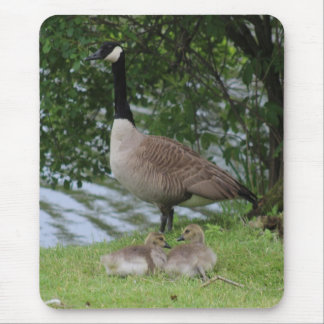 Goose and Goslings Mouse Pad