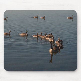 GOOSE FAMILY by SHARON SHARPE Mouse Pad