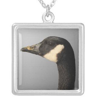 Goose head Necklace