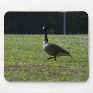 Goose II Mouse Pad