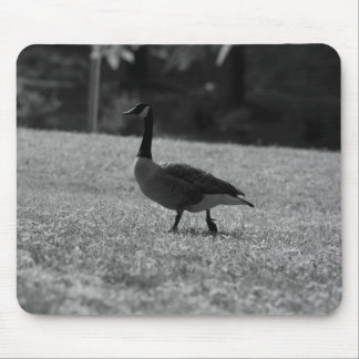 Goose III Mouse Pad