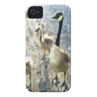 goose iPhone 4 cover