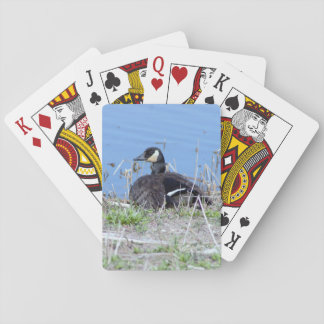 Goose Photo Playing Cards