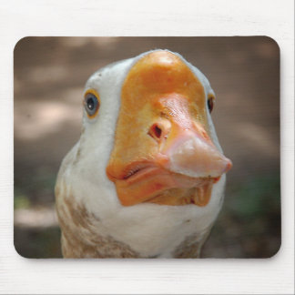 Goose Portrait Mouse Pad
