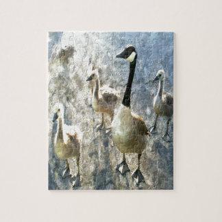 goose puzzles