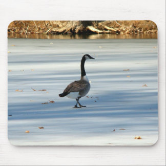 Goose walking Mousepad