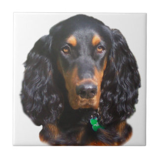 Gordon Setter Portrait Ceramic Tile