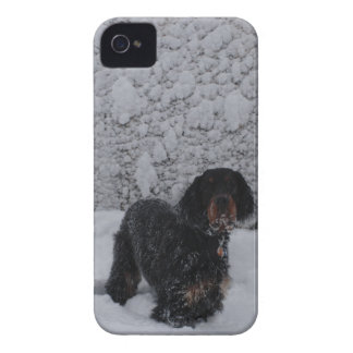 Gordon Setter Puppy in Snowstorm Blackberry Bold C Case-Mate iPhone 4 Case