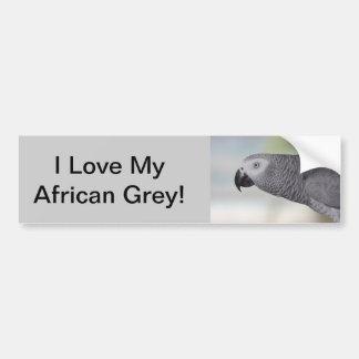 Gorgeous African Grey Parrot Bumper Sticker