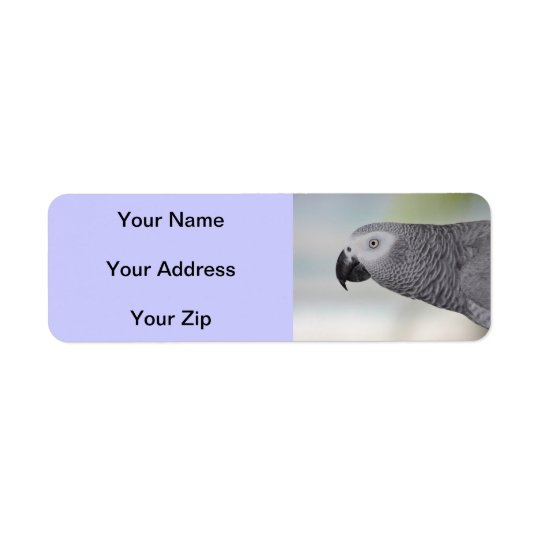 Gorgeous African Grey Parrot Return Address Label