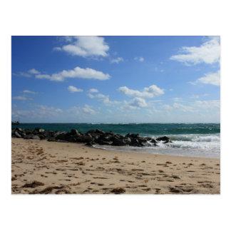 Gorgeous Beach Scene Postcard